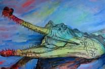 Indian Gharial Aligator